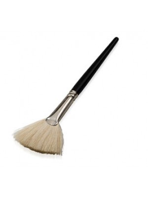3  Fan Brush